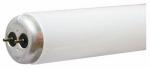 """48"""" T12 40 Watt Cool White Fluorescent Tube 2 pack"""