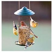 Audubon, Mini Steel Black Oil Sunflower Magnum Bird Feeder