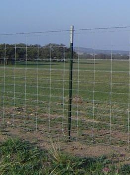 48 X 330 High Tensile Sheep Goat Fence
