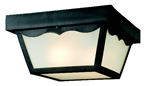 2 Light Outdoor Porch Ceiling Fixture, Black