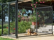 5' x 6' Premier Kennel Front with Gate