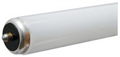 8' T8 59 Watt Fluorescent Tube