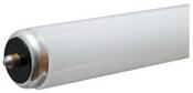 8' T8 59 Watt Fluorescent Tube