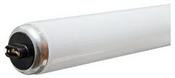 "96"" T12 95 Watt Cool White Fluorescent Tube"