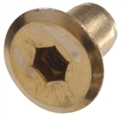 """Bright Brass Joint Connector Nuts (1/4""""-20)"""