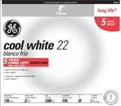 "8"" T9 22 Watt Cool White Fluorescent Tube"