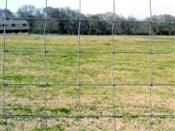 "Sheep/Goat 48"" Field Fence 1348-4-12-1/2 Gauge"