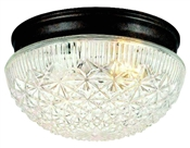 2 Light Indoor Ceiling Fixture - Bronze with Cut Glass