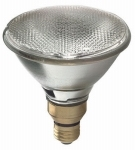 90 Watt Par38 Halogen In/Out Flood Wp