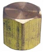 "1/8"" Female Pipe Thread Brass Cap"