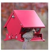 Audubon Mini Absolute II Squirrel Proof Hopper Bird Feeder