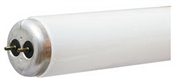 "48"" T12 40 Watt Cool White Fluorescent Tube"