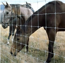 Shop 61 X 330 High Tensile Cattle Fence At Mccoys