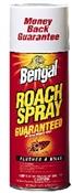 Roach Spray 9 Ounce