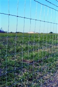 "36"" 14 Gauge Field Fence"