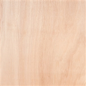 "1/4""x2'x2' Lauan Meranti Cut Plywood"