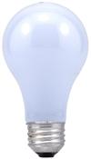 Decorative & Incandescent Bulbs