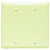 Ivory Nylon 2 Gang Blank Center Plate