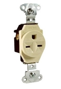 15A Heavy-Duty Single Outlet, Ivy