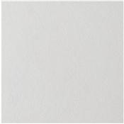 Custom White 1'x1' Ceiling Tile