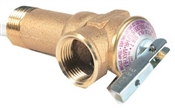 Temperature & Pressure Relief Valve